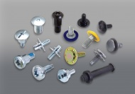 Special Head Shape Fastener with Encapsulated Cap